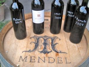 17 - Vinicolas - Mendel (2)