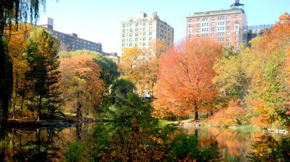 Central Park Nov