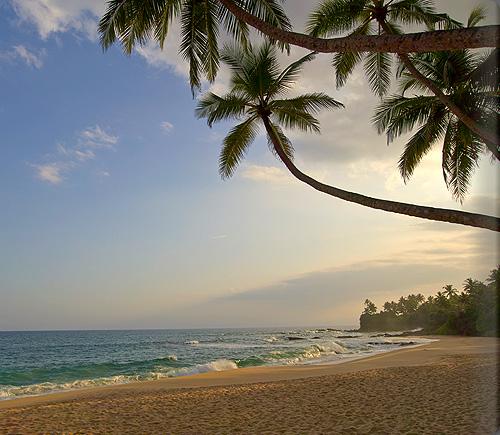 Wella_Beach_Dusk_alb