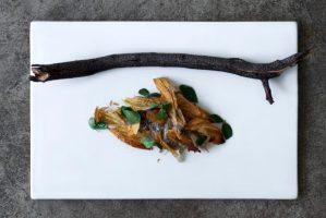 borago_2014_profile_food_1 worlds best